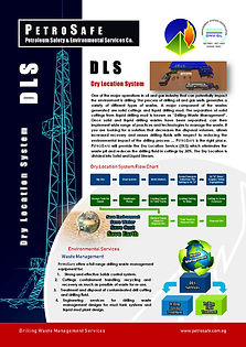 Dry Location Service Flyer_Page_1.jpg