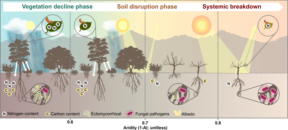 Global ecosystem thresholds driven by aridity