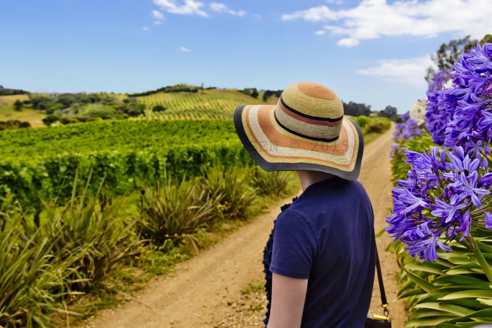 Kvinde kigger ud over vinmarker.