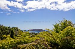Udsigt over frodigt landskab og ø.