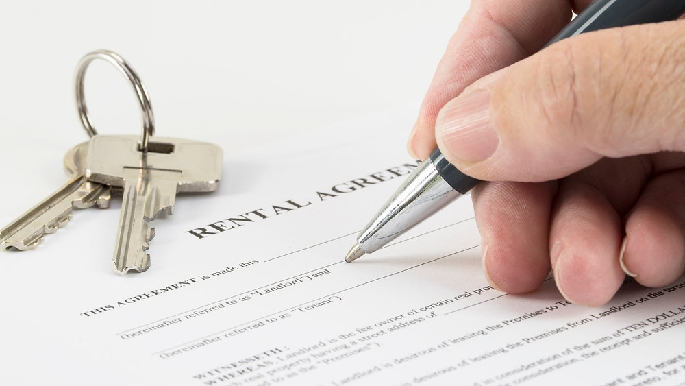 What is the Renters' Reform Bill and What Does it Mean For You?