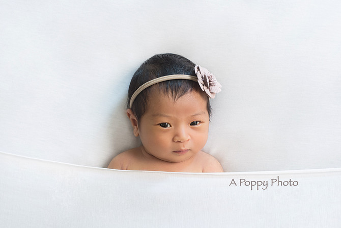 Family Newborn Session- Baby Sierra