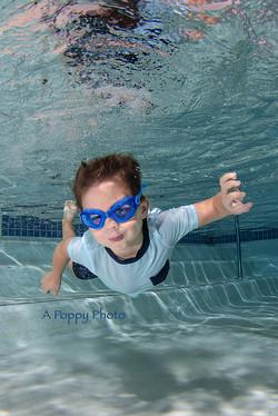Underwater Portrait A Poppy Photo