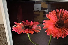 pharmasave - flower pic.jpg