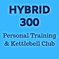 Hybrid 300 .png