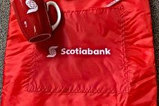 Scotia Bank - tote, etc..jpg
