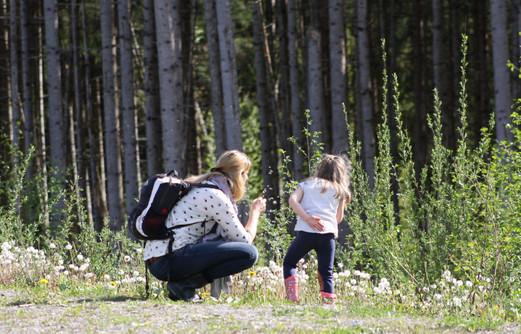 Wald- und Wiesenentdecker Workshop 2021