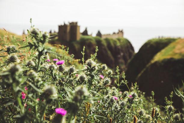 fotografin-fotograf-reise-travel-travelfotografie-reisefotografie-schottland-grossbritannien-scotland-greatbritain