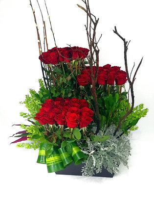 Rosas Asturia