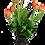 Thumbnail: Tulipanes Breda