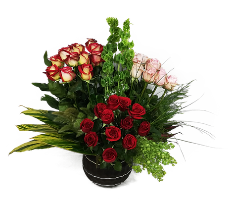 Rosas Ahigal