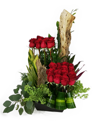 Rosas Catalanas