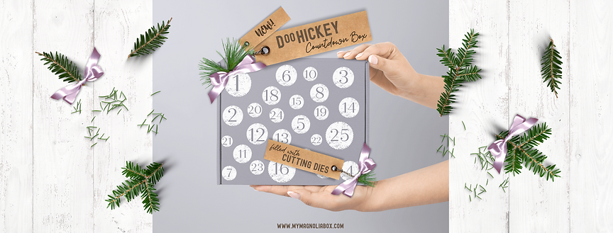 New DooHickey Countdown Box