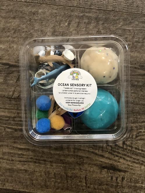 Sensory Play Dough Kit