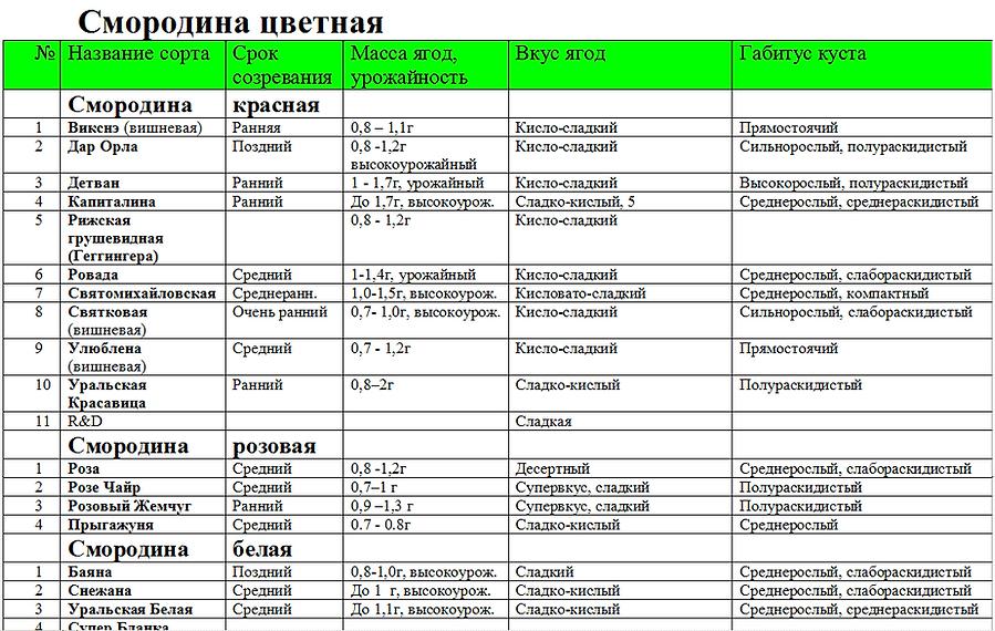 Лучшие сорта белой, розовой, красной смородины. Саженцы в РБ, доставка по РФ, Казахстану и не только