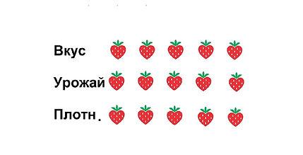 Клубника Белоруссии |рассада сорта Верона