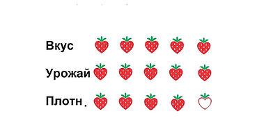 Клубника Белоруссии  рассада сорта Азия