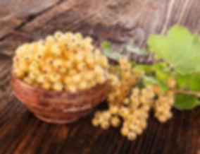 Купить саженцы белой смородины Баяна в Беларуси | Отправка почтой +375 20 779 19 92