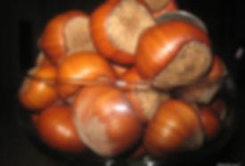 купить  фундук Трапезунд  в Беларуси