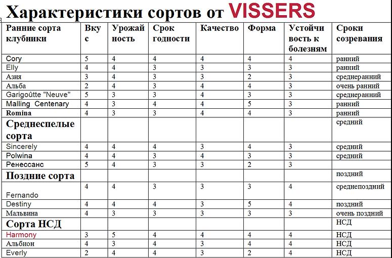 Купить новые сорта клубники в Минске и пчтой