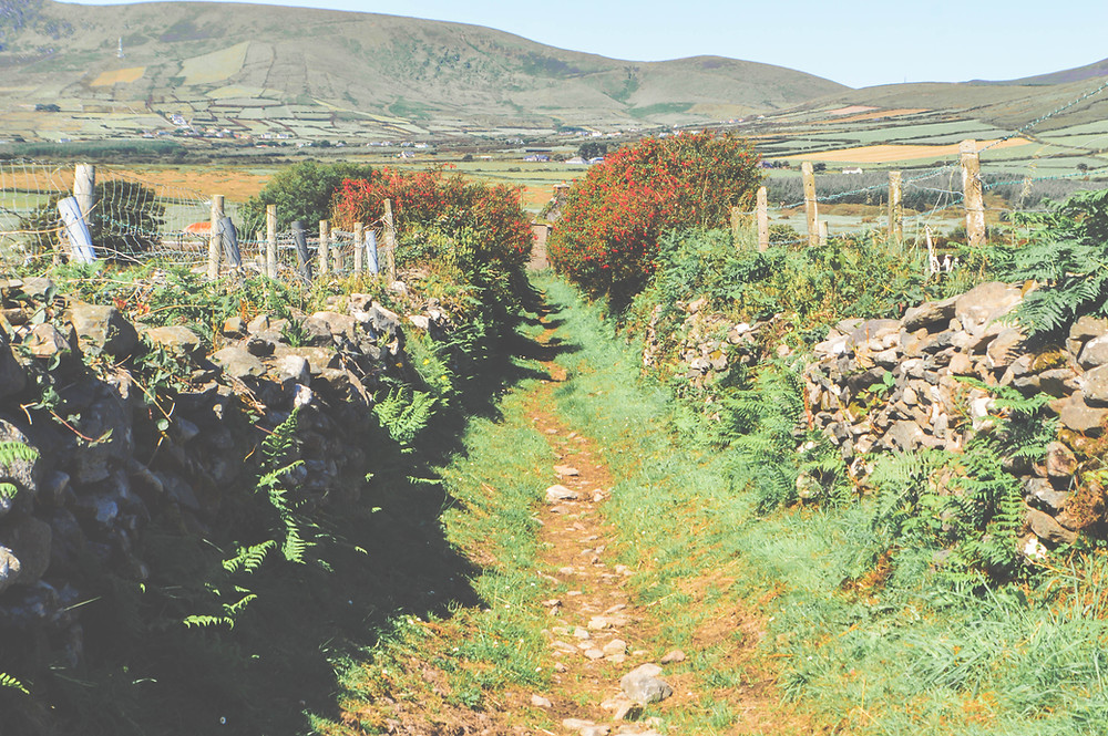 Twelve Day Roadtrip Ireland