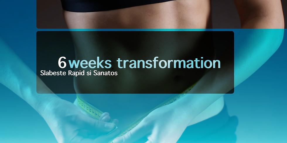 6 WEEKS TRANSFORMATION
