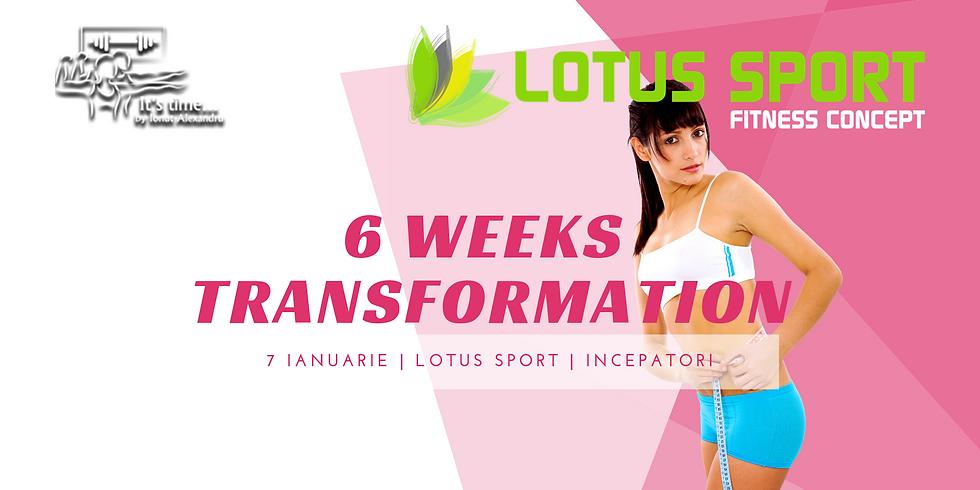 6WT - Lotus Incepatori