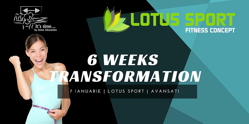 6WT - Lotus Avansati