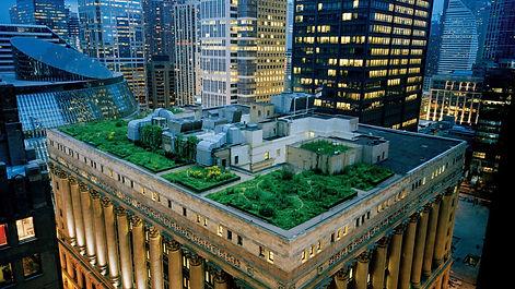chicago_city-hall-green.jpg