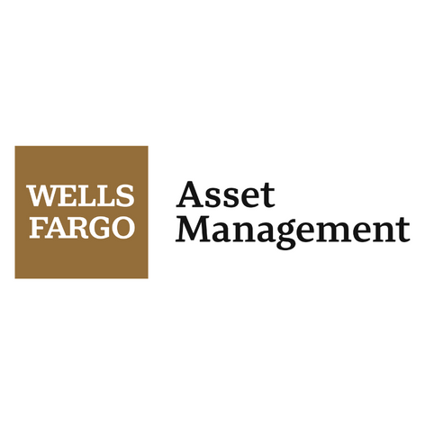 Excel 2020 - Wells Fargo Asset Management