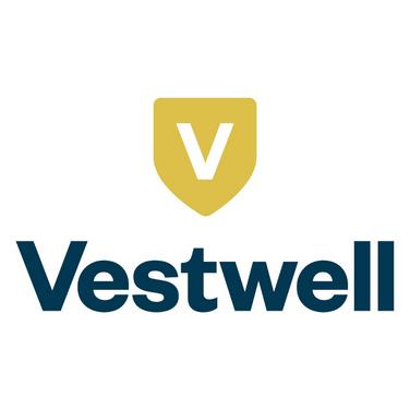 Excel 2020 - Vestwell