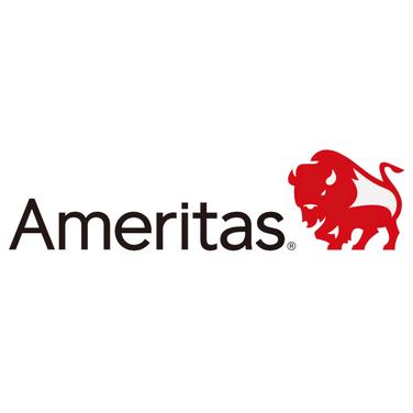 Excel 2020 - Ameritas
