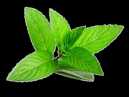 Hierbabuena (Precio por Paquete)