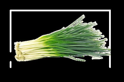 Cebollina ( Precio por Mazo )