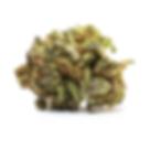 Dragon Fruit - Nug.png
