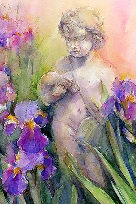Cherub in Iris