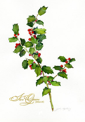 Holly Branch - Prints