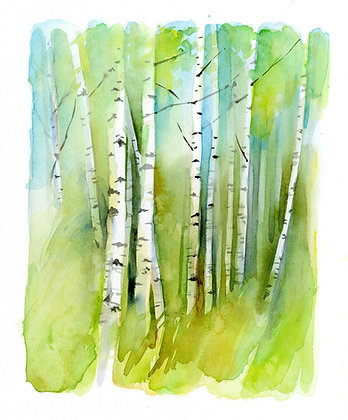Birch Grove - Prints