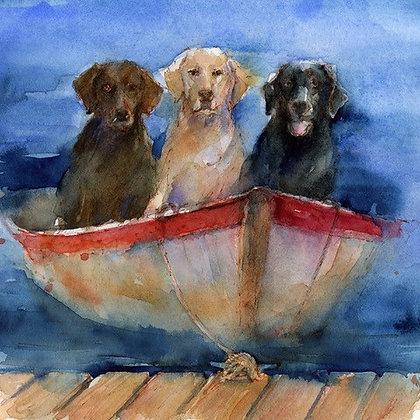 Lab Trio in Boat
