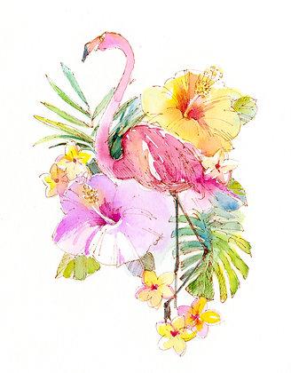 Flamingo - Prints