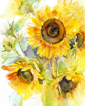 Sunflowers - Prints