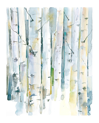 Gray Birches