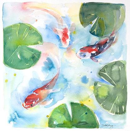 Koi Pond - Prints