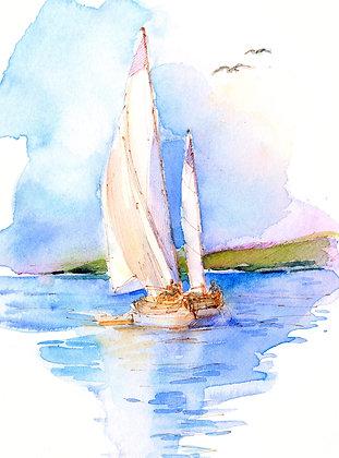 Sailboats & Seagulls