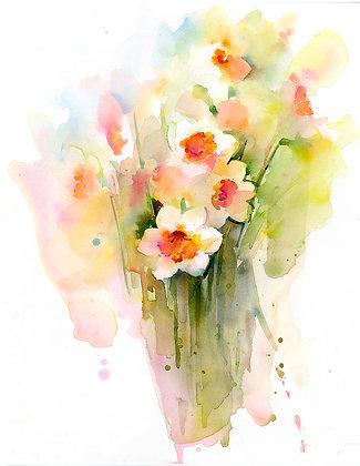 Orange & White Narcissus - Prints