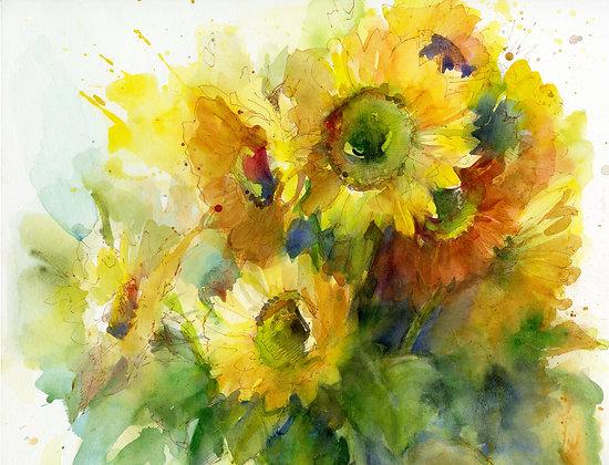 Sunflower Splendor - Prints