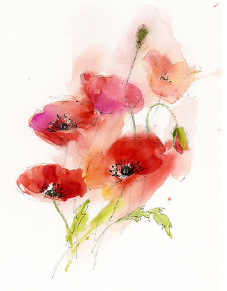 Red Poppies - Prints