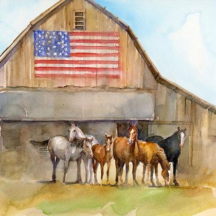 American Heartland - Prints