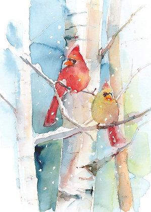 Cardinal Pair on Birch Branch - Prints