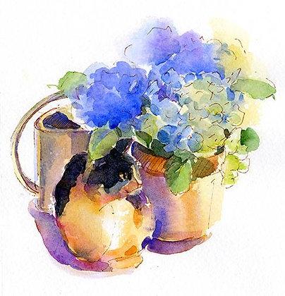 Blue Hydrangea in Pot w/Cat - Prints